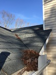 Clogged Gutters / Debris on Roof
